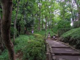 都会のど真ん中には見えませんね。有栖川公園