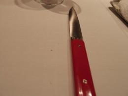 お肉が良く着れるナイフ。スット気持ち良いほどお肉が着れます。赤が良い色。