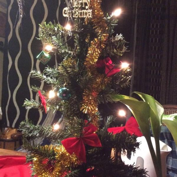 小さな、ミニクリスマスツリー。幼い日の思い出は一生覚えているものです。季節の行事を大切に。