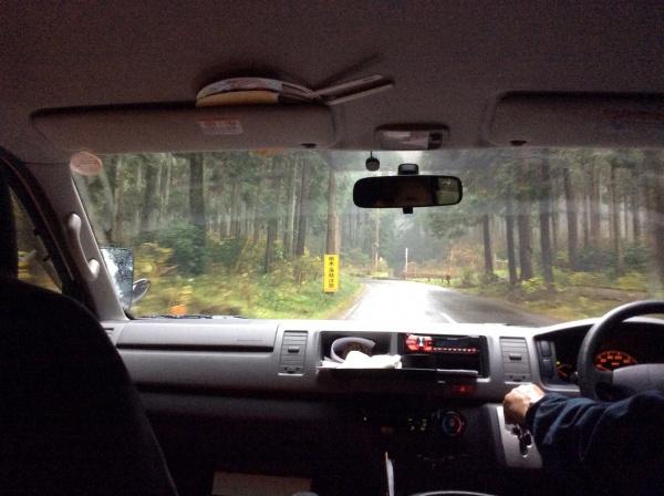 送迎バスの中から。原生林の道を走ります。雨のため、霧がかかり、幻想的な風景。
