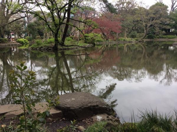 東京のど真ん中とは思えませんね。