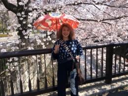 4月鯉のぼりの日傘をさして。
