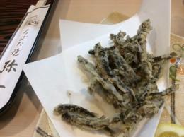 今日もドジョウの唐揚げ。これ食べて、風邪全快。リクエスト。