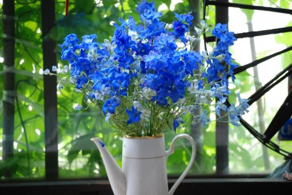 先週の月曜日にお花やさんから買ったデルフィーモーネの花。 毎日水を替え、茎を水切りして、今日で8日目です。 大切にすると持つものですね。