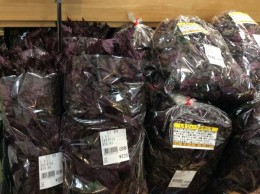 赤紫蘇3束買いました。 1束200円です。 今回は、青紫蘇ジュースも作ってみます。