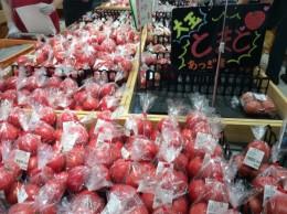 路地物トマトは美味しい!