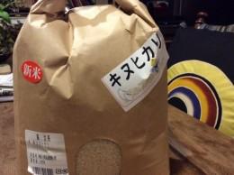 水が美味しい神奈川県寒川町の新米です。 重い物えっちらありがとう!