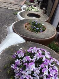 土管の植木鉢。