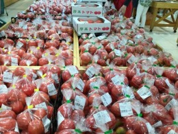 朝採りトマト美味しい。