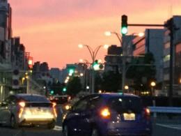 福井駅前の夕陽が綺麗だった。