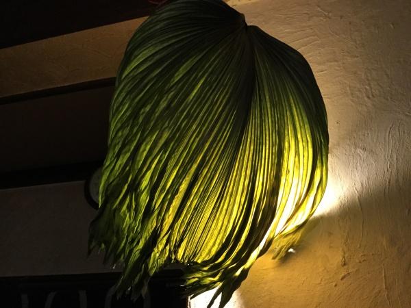 葉っぱで壁のLEDを被せてみました。 グリーンも優しい灯りになりました。